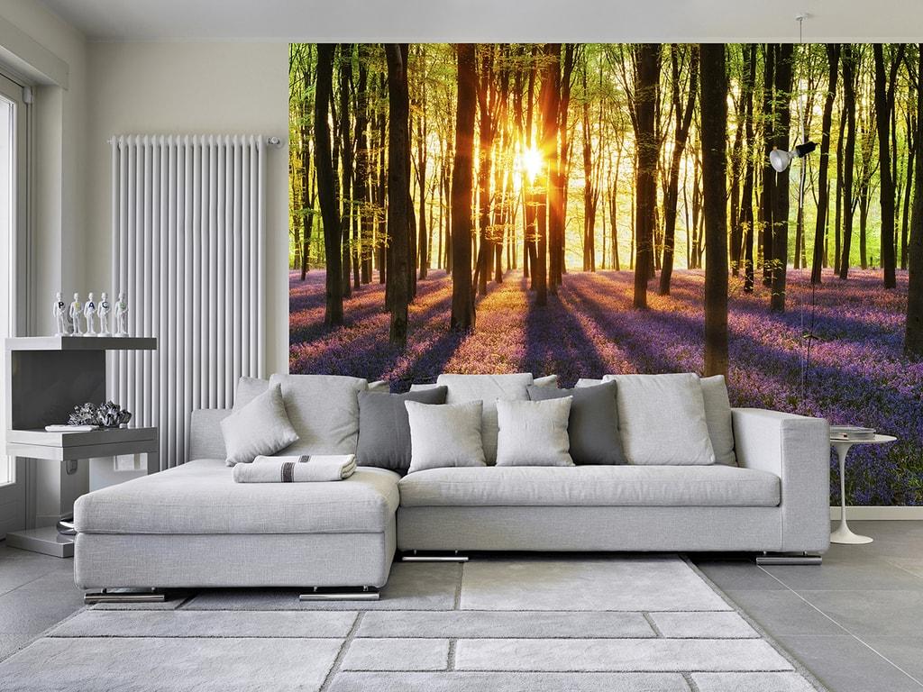 Wizard+Genius W+G vliesová fototapeta Východ slnka v lese 366x254 cm