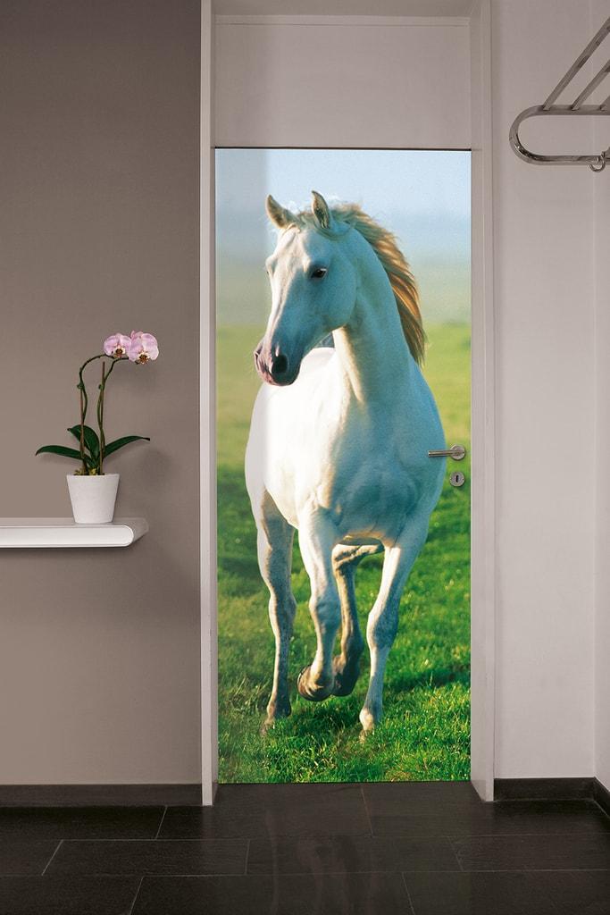 Wizard+Genius W+G fototapeta Bílý kůň 86x200 cm