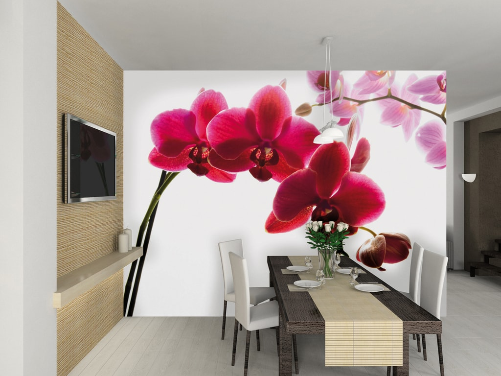 1Wall 1Wall fototapeta Orchidea 315x232 cm