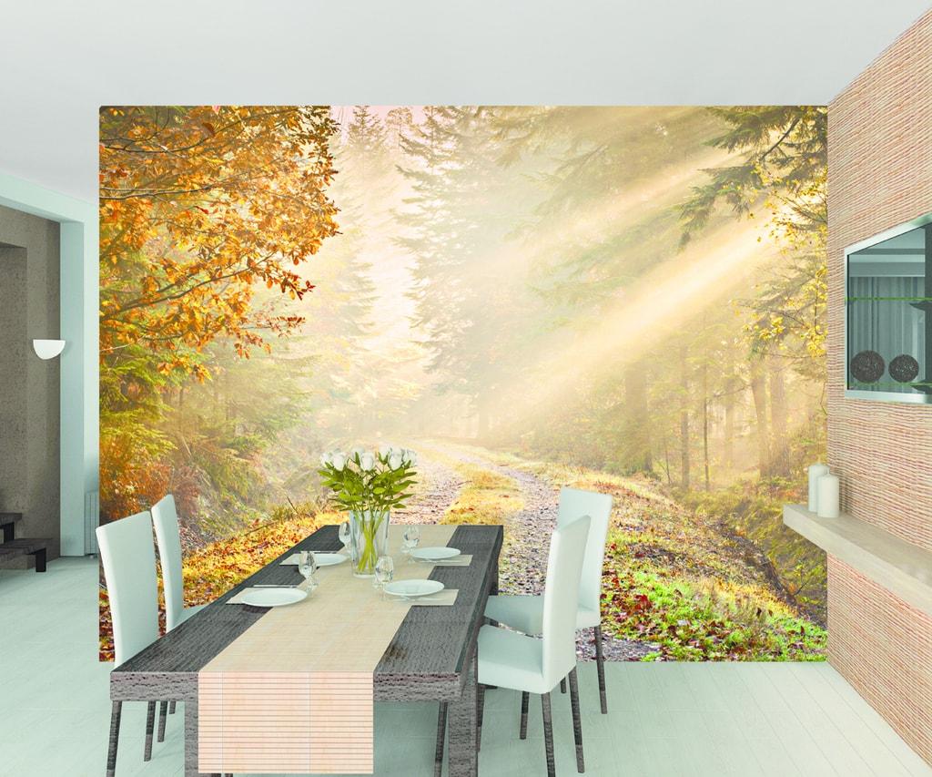 1Wall 1Wall fototapeta Podzimný les 315x232 cm